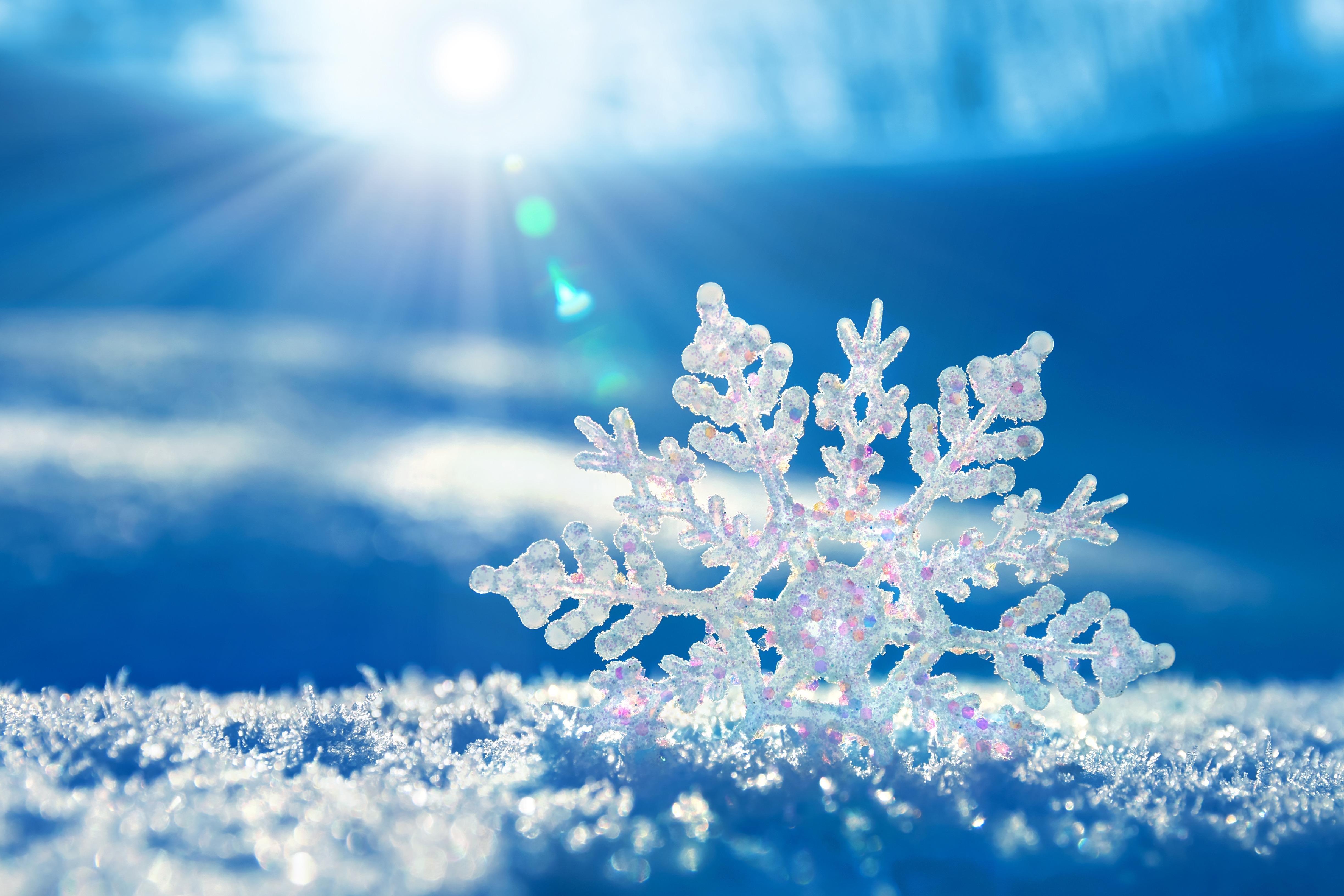 картинки снежная зима